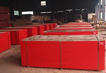 竹胶板-房建专用