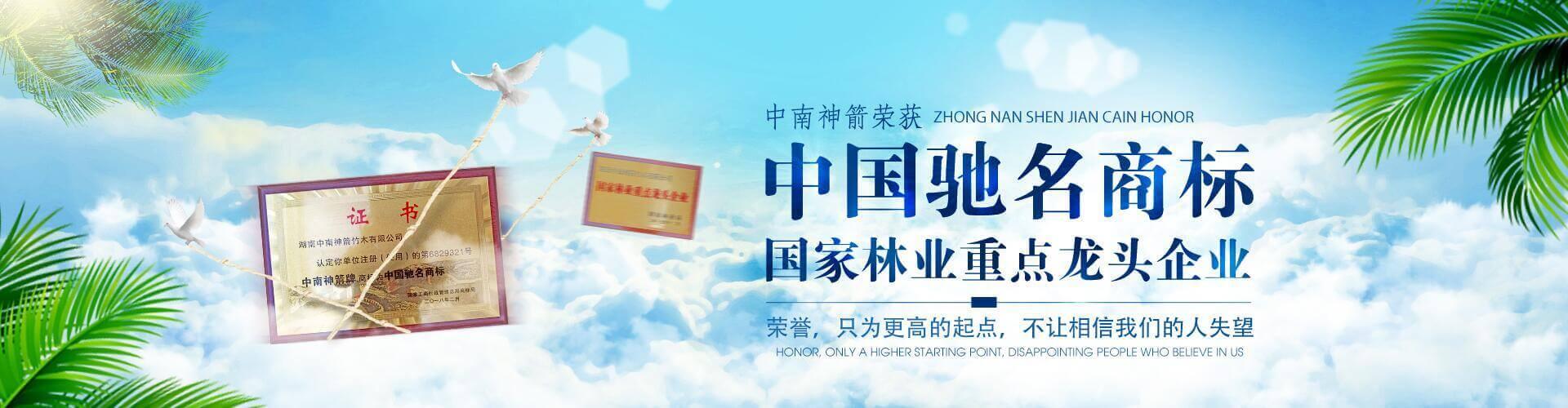 中南神箭—中国驰名商标